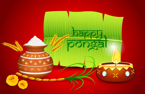 Happy pongal wishes 2018 sankranti images messages greetings m4hsunfo