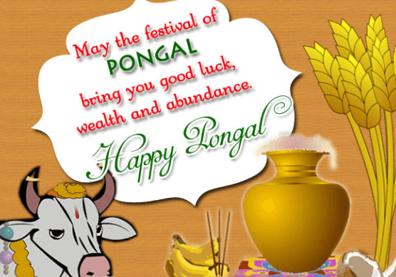 Happy pongal wishes 2018 sankranti images messages greetings pongal greetings m4hsunfo