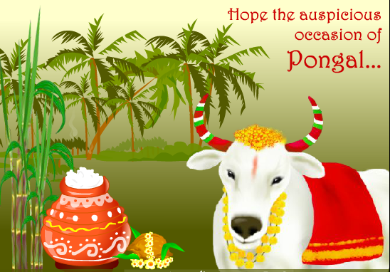 Happy pongal wishes 2018 sankranti images messages greetings pongal message m4hsunfo