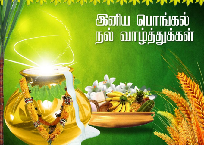 Happy pongal wishes 2018 sankranti images messages greetings pongal wishes in tamil m4hsunfo