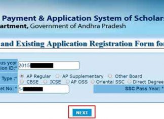 AP EPass Renewal Application 2017
