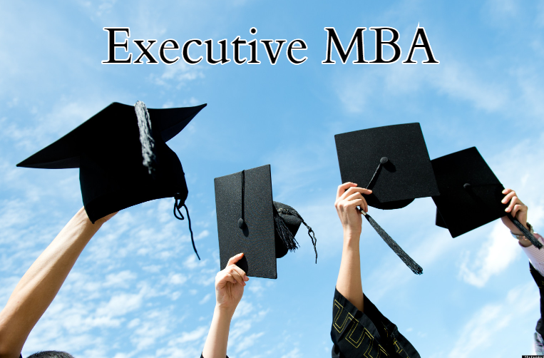 B Schools Offering Executive MBA India