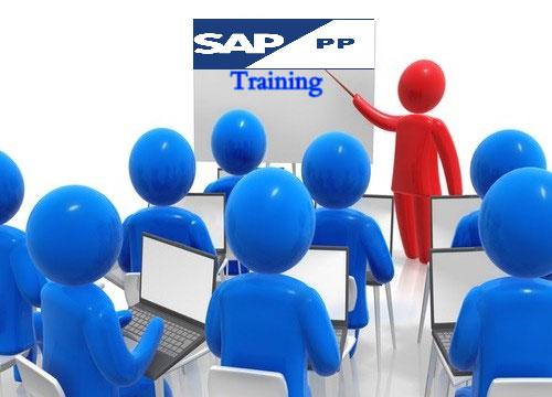 sap pp pi module tutorial pdf