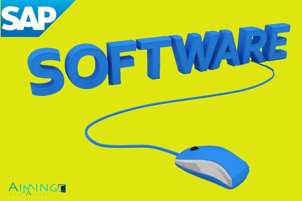 SAP-Software