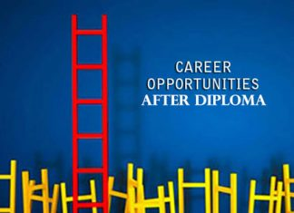 Career Opportunities After Diploma