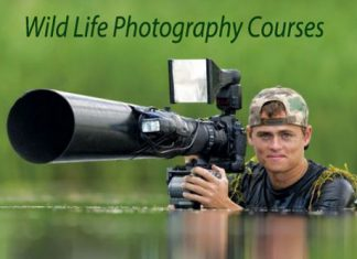 Wild-Life-Photography-Courses-Details