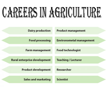 Agriculture Career