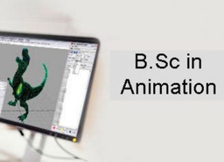 BSc Animation