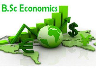 BSc Economics
