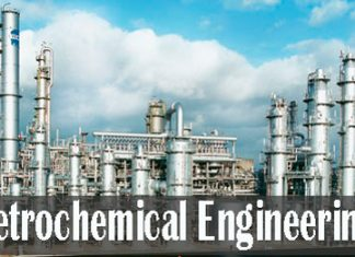 Petrochemica Engineering Course Details
