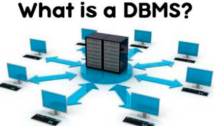 What is Data Base Management System
