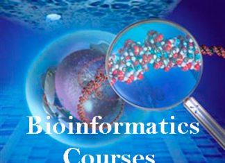 Bioinformatics Courses