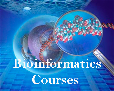 Bioinformatics Courses