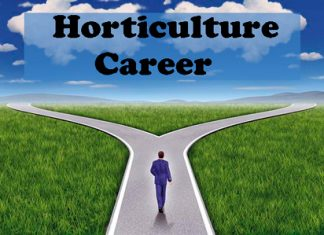 Horticulture Career