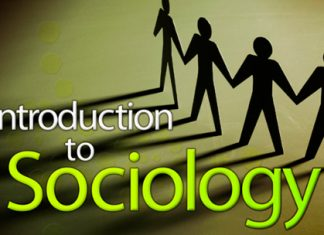 Sociology Courses Details
