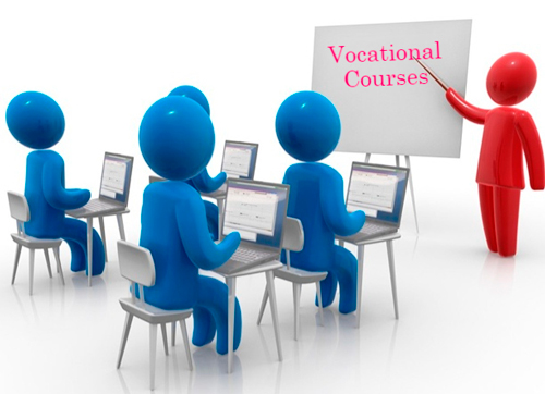 Bachelor of Vocation Courses Details