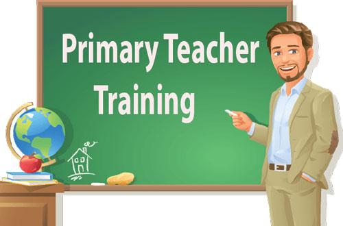 Primary Teacher Training