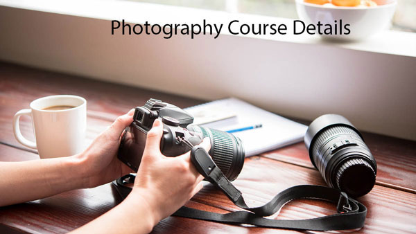 Career In Photography