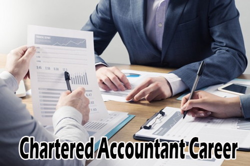 Chartered Accountant Career